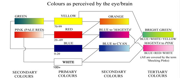 Colours as Perceived by the Eye and Brain